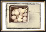 Basket of Figs Posters by Meghan McSweeney