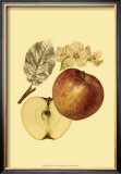 Ripe for Harvest I Posters by Heinrich Pfeiffer
