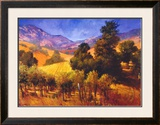 SouThern Vineyard Hills Posters by Philip Craig