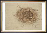 Nesting I Art by Meghan McSweeney