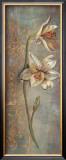 Floral Elegance VII Print by Hazel Lee