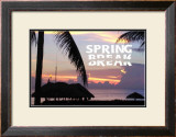 Spring Break Posters by Marilu Windvand