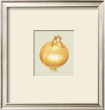 Onion Print by Alex Bloch