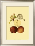 Ripe for Harvest IV Print by Heinrich Pfeiffer