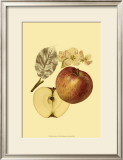 Ripe for Harvest I Poster by Heinrich Pfeiffer