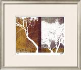 Whispering Trees II Limited Edition Framed Print by M.J. Lew