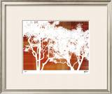 Zen Forest II Limited Edition Framed Print by M.J. Lew