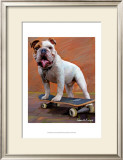 Bull Dog Nose Grind Posters by Robert Mcclintock