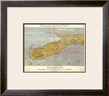 Florida and Part of Georgia and Alabama, c.1861 Framed Giclee Print by John Bachmann