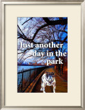 Just Another Day Prints by Marilu Windvand