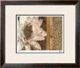 Classic Floral II Limited Edition Framed Print by M.J. Lew