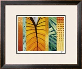 Rainforest Zen I Limited Edition Framed Print by M.J. Lew