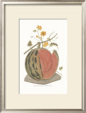 Melon Prints by George Brookshaw