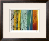 Rainforest Zen II Limited Edition Framed Print by M.J. Lew