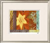 Wildflowers I Limited Edition Framed Print by M.J. Lew