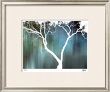 Zen Forest I Limited Edition Framed Print by M.J. Lew