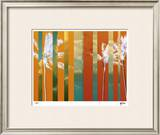 Tropical Variation III Limited Edition Framed Print by M.J. Lew