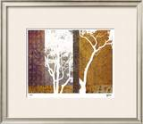 Whispering Trees I Limited Edition Framed Print by M.J. Lew