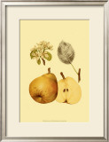 Ripe for Harvest II Prints by Heinrich Pfeiffer