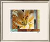 Wildflowers II Limited Edition Framed Print by M.J. Lew