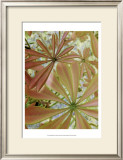 Woodland Plants in Red III Posters by Sharon Chandler