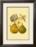 Ripe for Harvest III Prints by Heinrich Pfeiifer