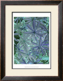 Woodland Plants in Blue IV Prints by Sharon Chandler