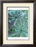 Woodland Plants in Blue III Poster by Sharon Chandler