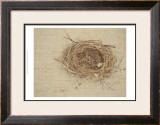 Nesting I Prints by Meghan McSweeney