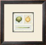 Antique Vegetables Prints by Alex Bloch
