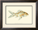 Speckled Goldfish Poster by S. Matsubara