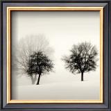 Winter Light (detail) Posters by Ilona Wellmann