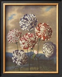 Group of Carnations Posters by Dr. Robert J. Thornton
