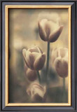 Tinted Tulips III Posters by Thea Schrack