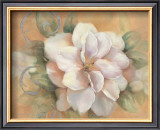 Camellia on Honey I Prints by Vivian Flasch