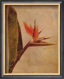 Kauai Prints by Linda Maron