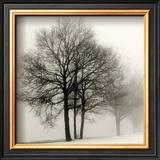 Winter Grove Poster by Ilona Wellmann