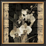 Orchids in Bloom II Poster by John Seba