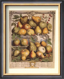 Fruits of the Season, Spring Posters by Robert Furber