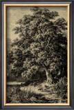 Oak Tree Prints by Ernst Heyn