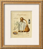 Aromatherapie, Lavande Prints by Laurence David