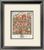 Twelve Months of Fruits, 1732, August Poster by Robert Furber