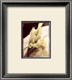 Calla Lilies Detail Print by Rosanne Olson