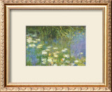 Water Lilies of the Orangerie as Giverny Prints by Claude Monet