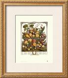 Twelve Months of Fruits, 1732, July Prints by Robert Furber