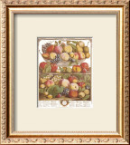 Twelve Months of Fruits, 1732, September Posters by Robert Furber