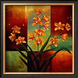 Orange Orchid Poster by Jill Deveraux