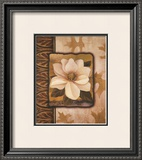 White Gardenia Prints by T. C. Chiu