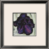 Purple Petunia Print by Georgia O'Keeffe