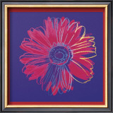 Daisy, c.1982  (blue and red) Print by Andy Warhol
